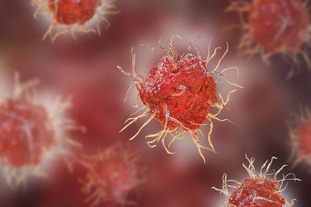 Dendritische cel, antigeen-presenterende immuuncel, 3D-afbeelding