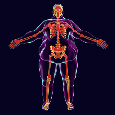 Obesity problem conceptual image, 3D illustration showing normal skeleton inside obese male body Stock Photo