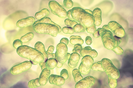 Prevotella bacteria, 3D illustration. Gram-negative anaerobic bacteria, members of oral and vaginal flora, cause anaerobic infections of respiratory tract and other location Stock Photo