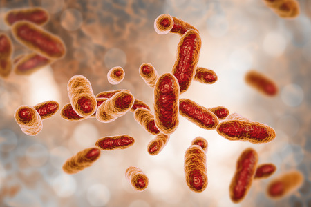Tannerella forsythia bacteria, 3D illustration. Gram-negative anaerobic bacteria that cause periodontal diseases and have found to be associated with esophageal cancer Foto de archivo