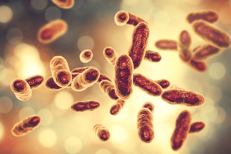Tannerella forsythia bacteria, 3D illustration. Gram-negative anaerobic bacteria that cause periodontal diseases and have found to be associated with esophageal cancer Stock Photo