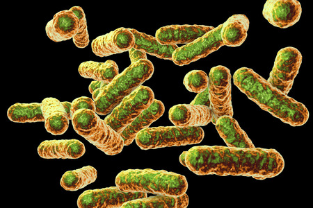 Bartonella quintana bacteria, the causative agent of trench fever, formerly known as Rochalimaea bacteria, 3D illustration Stock Photo