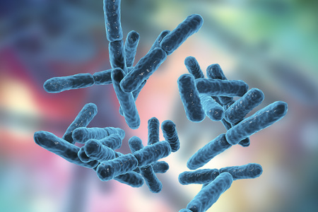 Bacteriën Bifidobacterium, grampositieve anaerobe staafvormige bacteriën die deel uitmaken van de normale flora van de menselijke darm worden gebruikt als probiotica en in yoghurtproductie. 3D illustratie Stockfoto