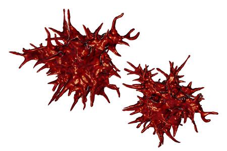 Acanthamoeba castellanii amoeba, 3D illustration. Amoeba found in all aquatic habitats and soil, causes ceratitis especially amongst contact lens wearers
