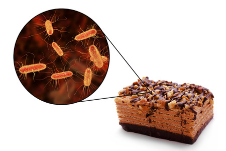 Escherichia coli food borne infections, medical concept, 3D illustration showing cake as a common source of food infections and close-up view of E. coli bacteria contaminating food Stock Photo