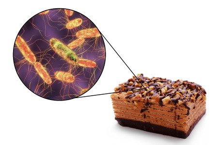 Salmonellosis, salmonella toxicoinfection, medical concept, 3D illustration showing cake as a common source of food infections and close-up view of Salmonella bacteria contaminating food Stock Photo