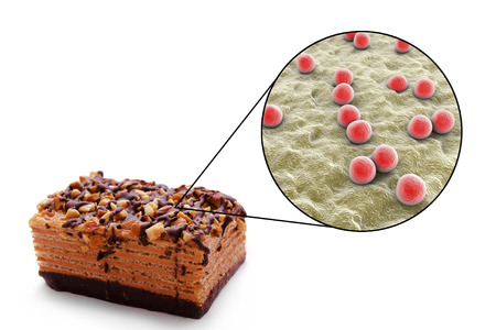 Staphylococcal food poisoning, medical concept, 3D illustration showing cake as a common source of food infection and close-up view of S. aureus bacteria contaminating food Stock Photo