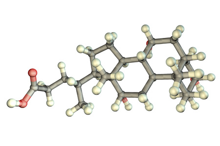 Cholic acid molecule isolated on white background, 3D illustration. A major primary bile acid produced in the liver, it facilitates fat absorption and cholesterol excretion