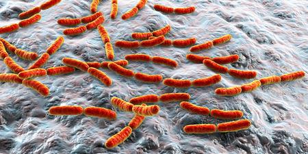 Bacteria Lactobacillus, 3D illustration. Normal flora of small intestine, lactic acid bacteria. Probiotic bacterium Фото со стока