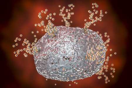 Mast cell releasing histamine during allergic response, 3D illustration 写真素材