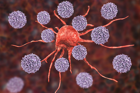 T-lymphocytes attacking cancer cell, 3D illustration. Anticancer immunity and treatment concept