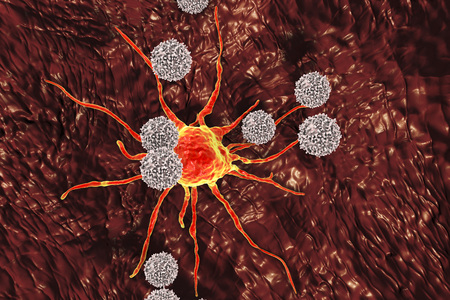 T-lymphocytes attacking cancer cell, 3D illustration. Anticancer immunity and treatment concept Stock Photo
