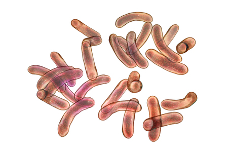 Vibrio cholerae bacteria isolated on white background with clipping path, 3D illustration. Bacterium which causes cholera disease and is transmitted by contaminated water