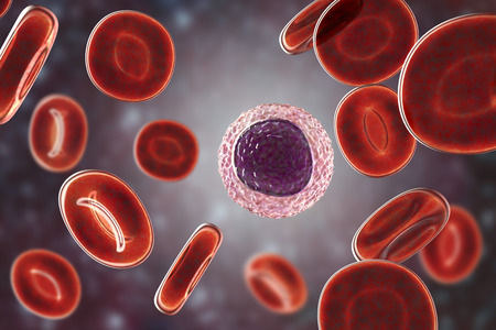 Lymphocyte surrounded by red blood cells, 3D illustration