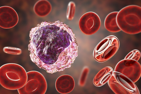 Monocyte surrounded by red blood cells, 3D illustration Stock Photo