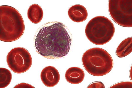 Lymphoblast, an immature white blood cell, surrounded by red blood cells, 3D illustration, isolated on white background with clipping path Stock fotó
