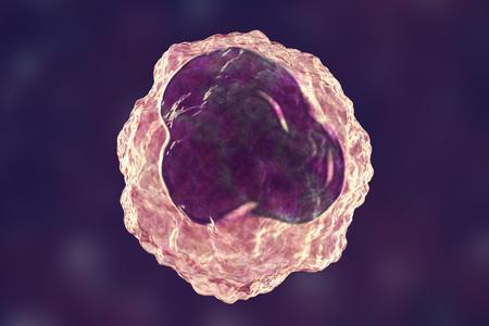 Monocyte white blood cell on purple background, 3D illustration