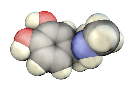 Epinephrine molecule, 3D illustration. A hormone produced by adrenal gland, it has effect on blood pressure, lypolysis, glycogenolysis