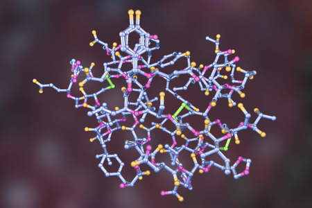 Molecular model of insulin hormone, 3D illustration. It is produced by pancreas and takes part in glucose and lipid metabolism Stock Photo