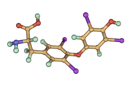 Molecule of thyroxine, T4, a hormone produced by thyroid gland, 3D illustration Stock Photo