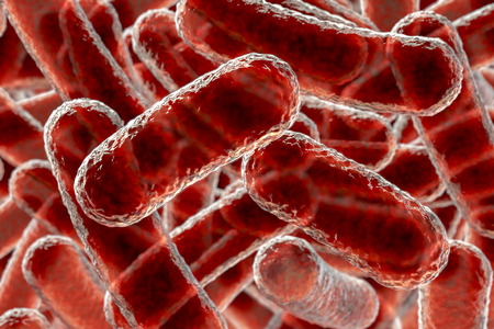 Close up view of rod shaped bacteria, 3D illustration