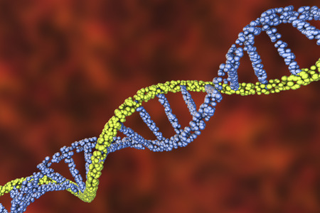 Double helix of DNA. Science background. 3D illustration 写真素材