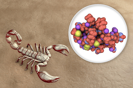 Molecule of scorpion chlorotoxin, 3D illustration. A peptide from venom of deathstalker scorpion Leiurus quinquestriatus, studied as a potential anticancer agent for treatment of brain cancer glioma Фото со стока - 118091088