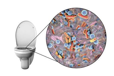 Toilet microbes, conceptual 3D illustration. Transmission of diarrheal infections. Bacteria transmitted by fecal-oral mechanism, such as Escherichia coli, Salmonella, Shigella and other Stock Photo
