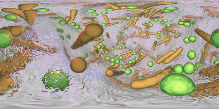 360-degree spherical panorama of bacterial biofilm. Mixture of bacteria of different types and shapes, 3D illustration