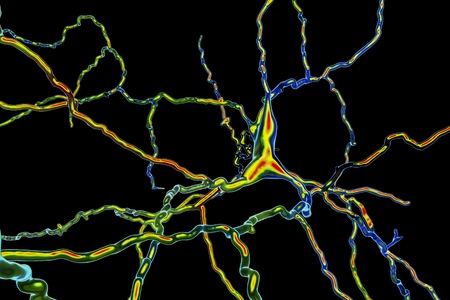 Dopaminergic neuron, 3D illustration. Degeneration of this brain cells is responsible for development of Parkinsons disease