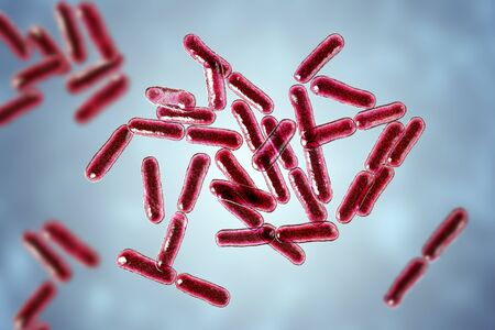 Probiotic bacteria Bacillus clausii, 3D illustration. B. clausii is a rod-shaped Gram-positive aerobic bacterium used to restore microflora of intestine Stock Photo