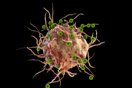 virus, and immune cell, 3D illustration. The concept of antiviral immunity and vaccination