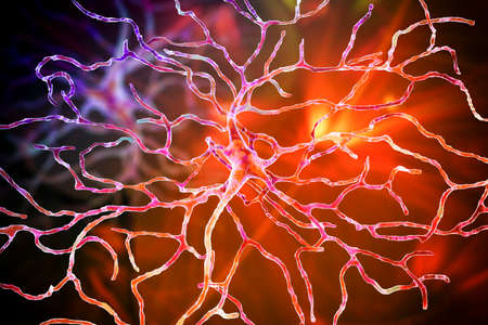 Retinal neuron, a neuron that plays crucial role in vision, it transforms the optical image in order to extract visual information