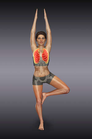 Respiratory regulation and breathing in yoga Standard-Bild