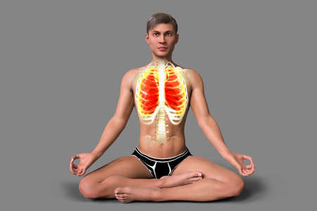 A young man in Lotus yoga position, or Padmasana, with highlighted lungs, 3D illustration. Respiratory exercises and meditation for recovery and prevention of COVID-19