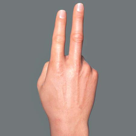 British, Australian and New Zealand Sign Language (BANZSL) sign number 2, 3D illustration
