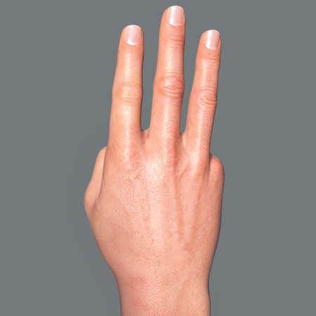 British, Australian and New Zealand Sign Language (BANZSL) sign number 3, 3D illustration Standard-Bild
