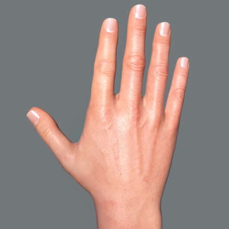 British, Australian and New Zealand Sign Language (BANZSL) sign number 5, 3D illustration
