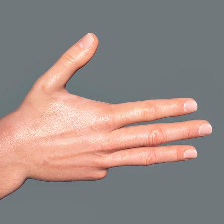 British, Australian and New Zealand Sign Language (BANZSL) sign number 9, 3D illustration