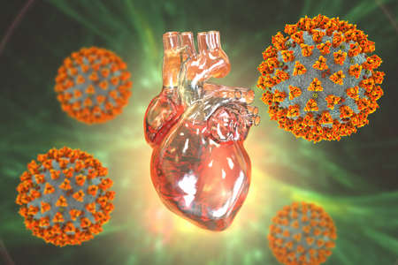 COVID-19 viruses affecting the heart, conceptual 3D illustration. Heart complications associated with COVID-19 coronavirus disease. The negative effect of SARS-CoV-2 virus on the human heart.
