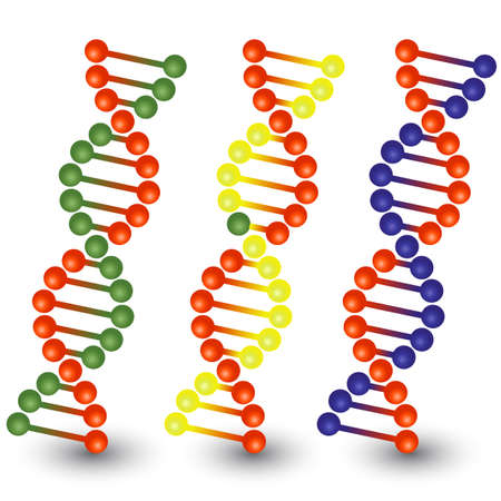 strands: Seamless DNA strands.