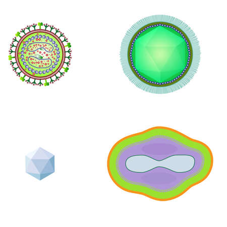 ameba: bacteria and virus cells isolated.