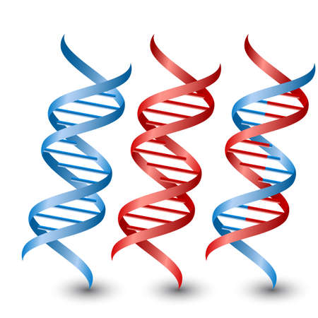 dna graph: Seamless DNA strands.