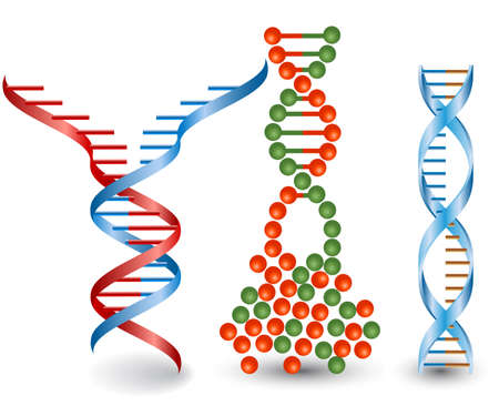 cytosine: Abstract images of broken DNA chains on the white background.