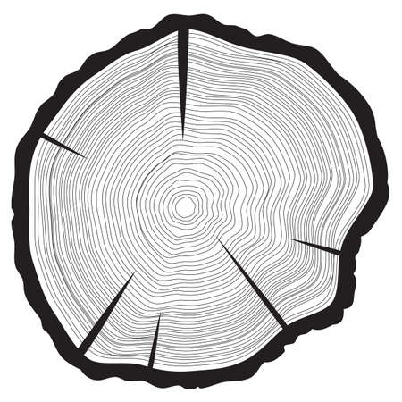 Tree rings background. Annual tree. vector illustration,