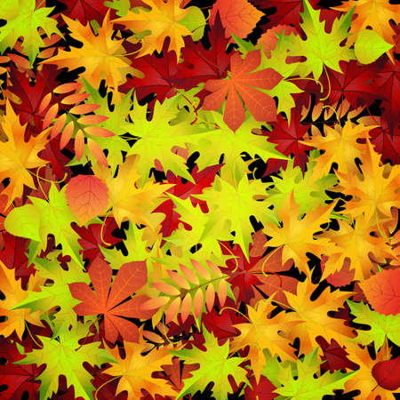 chokeberry: autumn background with red and yellow leaves, vector illustration