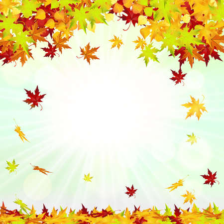 autumn leaves falling: Autumn Frame With Falling Leaves on Sky Background. Elegant Design with Rays of Sun  Vector Illustration.