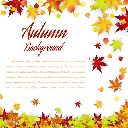 autumn leaves falling: Autumn Frame With Falling Leaves on White Background. Elegant Design with Text Space . Vector Illustration.
