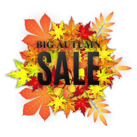 Autumn typographical background with autumn leaves.  Fall leaf. Autumn sale vector banner Illustration