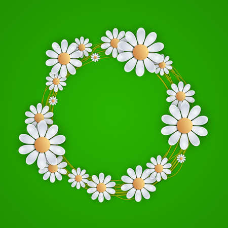 daisy vector: Floral background with daisy, daisy vector background summer and spring design. vector illustration Illustration